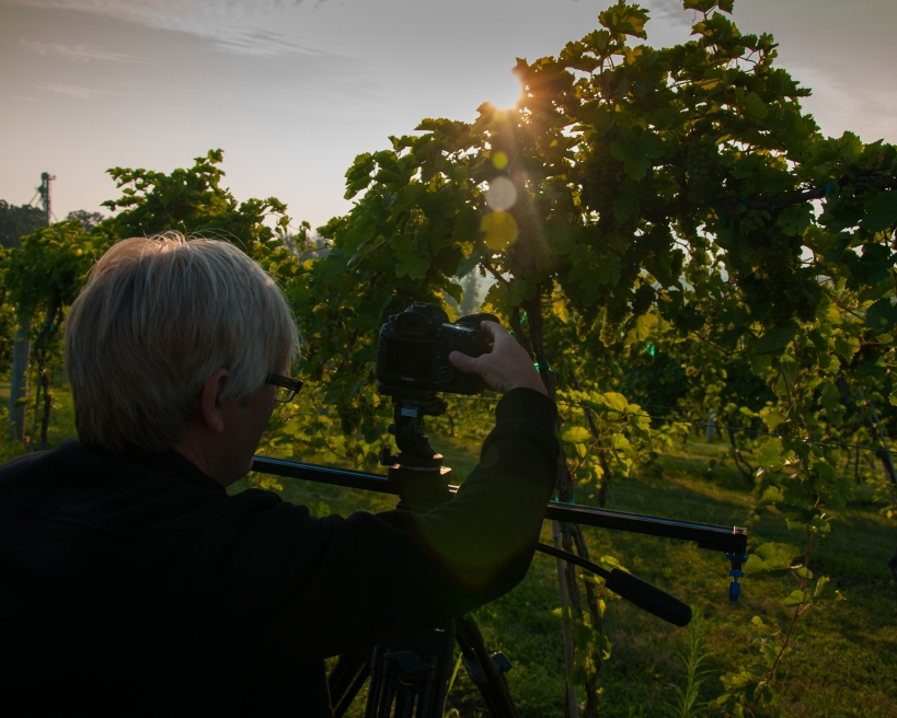 Kirk shooting through the LaCrosse grapes.